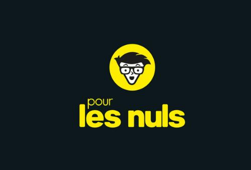 Pour Les Nuls